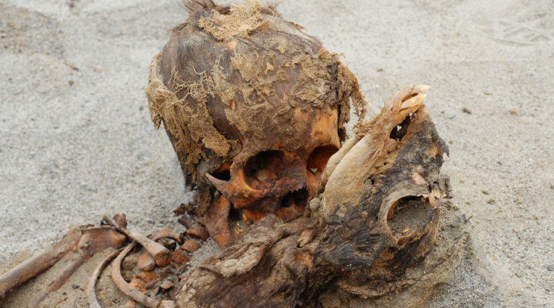 Ancient Dead Bodies Children Peru