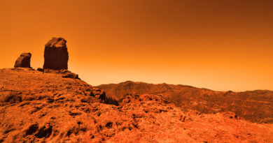 Life on red planet