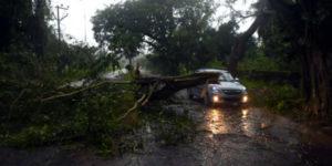 Cyclone Gaja Damage