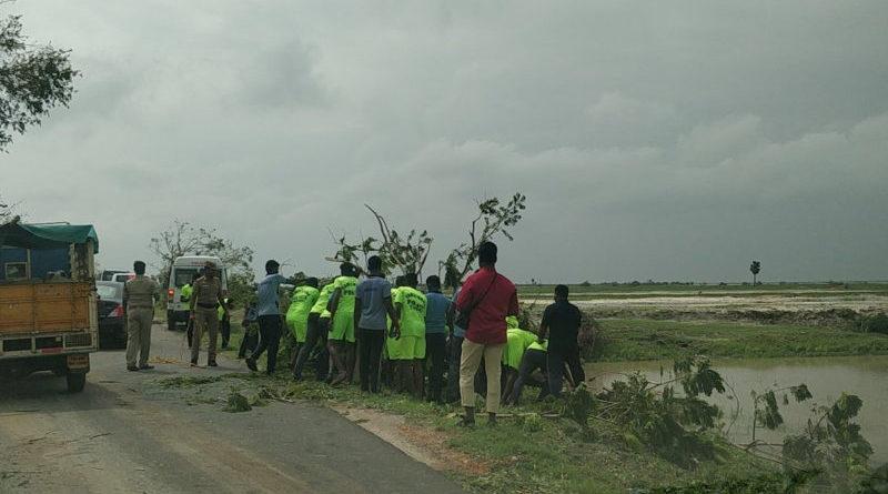 The aftermath of cyclone Gaja is seen in Tamil Nadu